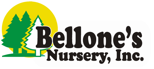Bellone's Nursery, Inc.